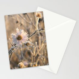 frozen delicacy Stationery Cards