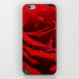 Red Rose with Drops  011 iPhone Skin