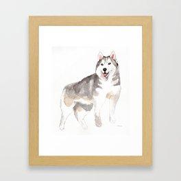 Husky my Love Framed Art Print