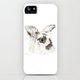 Pixie the Lionhead Rabbit by Teresa Thompson iPhone Case