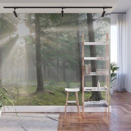 Into the wild forest - North Kessock, Highlands, Scotland Wall Mural