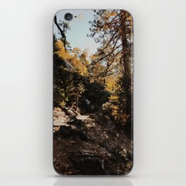 Fall in the Mountains iPhone Skin