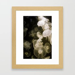 Yellow Jellyfish Framed Art Print