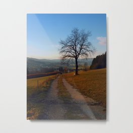Tree, trail and indian summer evening | landscape photography Metal Print