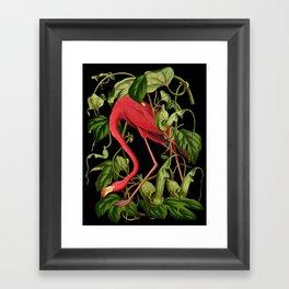 Flamingo Black Framed Art Print