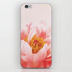 True Romance iPhone & iPod Skin