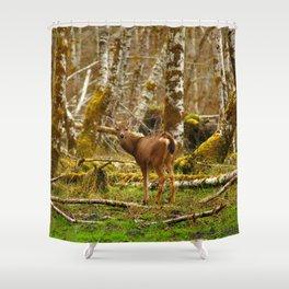 Deer In The HOH Rainforest Shower Curtain