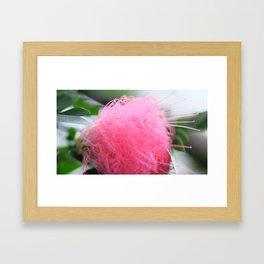 Something Pink!  Framed Art Print