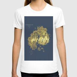 Mt. Desert Island 1875 T-shirt