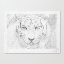 Graphite Tiger  Canvas Print