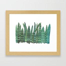Snake Plants Galore Framed Art Print