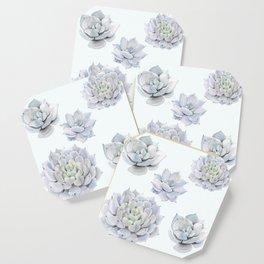 Blue Succulents Coaster