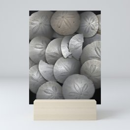 Sand Dollar Collage Mini Art Print