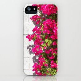 Bougainvilleas and White Brick Wall in Palm Springs, California iPhone Case