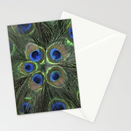 Peacock Flower Stationery Cards