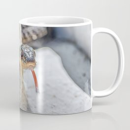 Garter snake with its tongue out Coffee Mug