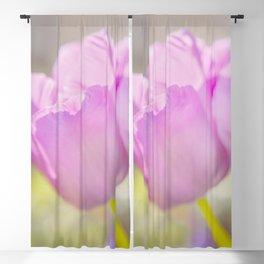 Backlit Bloom Blackout Curtain