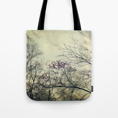 Before The Rain Tote Bag
