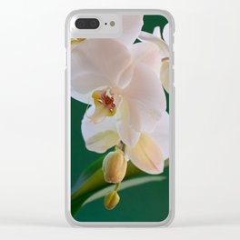 Blossoming White Orchid Flower on Green Background Clear iPhone Case