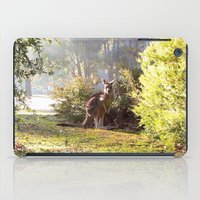 kangaroo iPad Cases featuring Kangaroo by Nove Studio