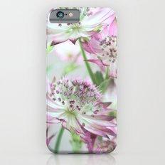Pastel Pink Astrantia Flowers Slim Case iPhone 6s