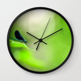 Blue Damsel and the Lime Green Sky Wall Clock