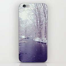 winter blues iPhone & iPod Skin