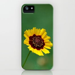 Coreopsis Flower iPhone Case