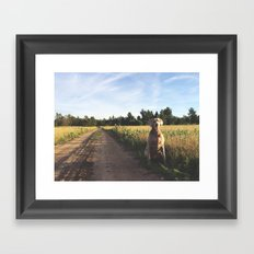 Farm Field with Charley Framed Art Print