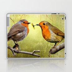 Robins Reflected Laptop & iPad Skin