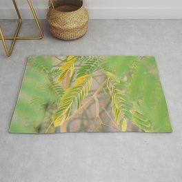 Blur Colorful Leaves Photo Rug