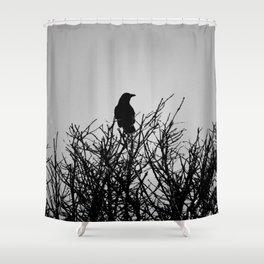 Black Watch Shower Curtain