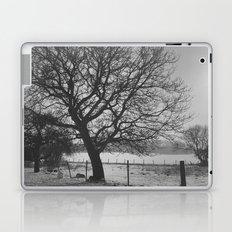 A Winter Tree Laptop & iPad Skin