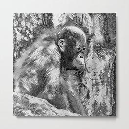 AnimalArtBW_OrangUtan_20170907_by_JAMColorsSpecial Metal Print