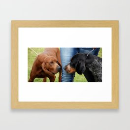 Coonhounds Framed Art Print