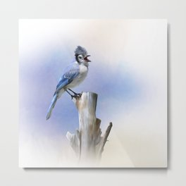 Blue Jay bird perched,watercolor painting Metal Print