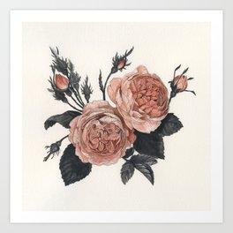 Maura Rose Art Print