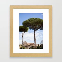 Faltonia Betitia Proba Framed Art Print