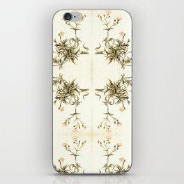 gypsophila repens iPhone Skin