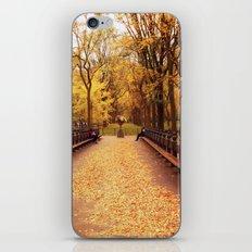Autumn - Central Park - New York City iPhone & iPod Skin