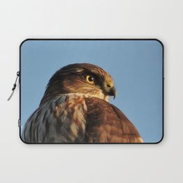 Young Cooper's Hawk Laptop Sleeve