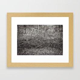 Twigs Framed Art Print