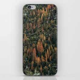 Autumn 24 iPhone Skin