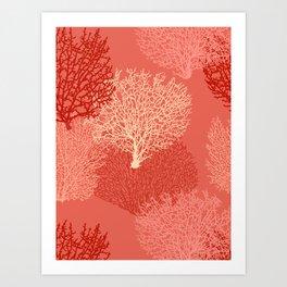 Fan Coral Print, Shades of Coral Orange Art Print