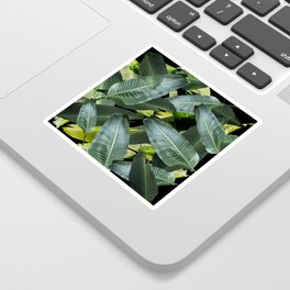 Topical palm leaf, banana leaf, black background, greens, Beach Hawaii decor Sticker