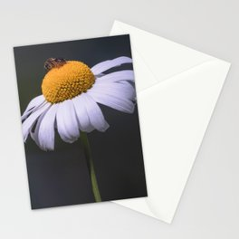 On Top of the World - Fine Art Flower Stationery Cards