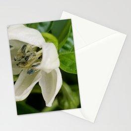 Poblano flower Stationery Cards