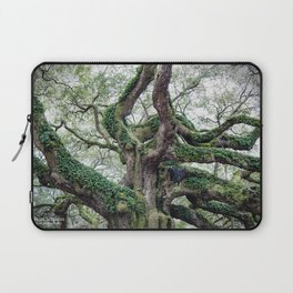 angel oak Laptop Sleeve
