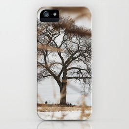 Framed by Reeds iPhone Case