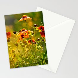 Greeting the Summer Rain Stationery Cards